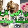آرایشگاه زنانه در فردیس کرج (دوریس)