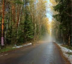 جاهای دیدنی کرج,چاده چالوس کرج,عروس,جاده زیبای چالوس,کرج,نقاط دیدنی کرج,عروس,بهترین جاده,کرج,سرسبزترین جای کرج,جاده های ایران کرج,کرج,تهران,کرج