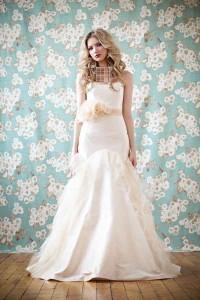 چند نکته در مورد انتخاب لباس عروس,مواردی درمورد انتخاب لباس عروس