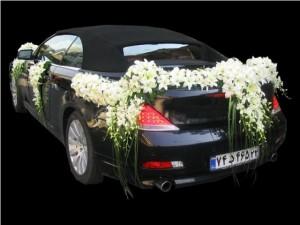 مدل تزئین ماشین عروس تزئین ماشین عروس