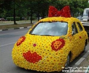 عکس ماشین عروس رانا ریو گل رز روبا تزیین