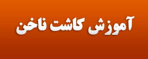 خدمات کاشت ناخن تهران